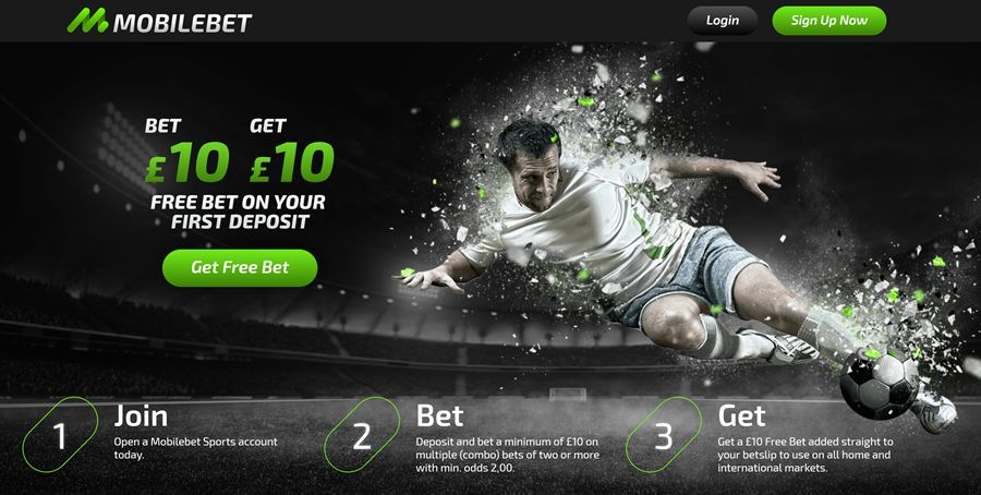 Can You Truly Earn Money Betting on Sports?
